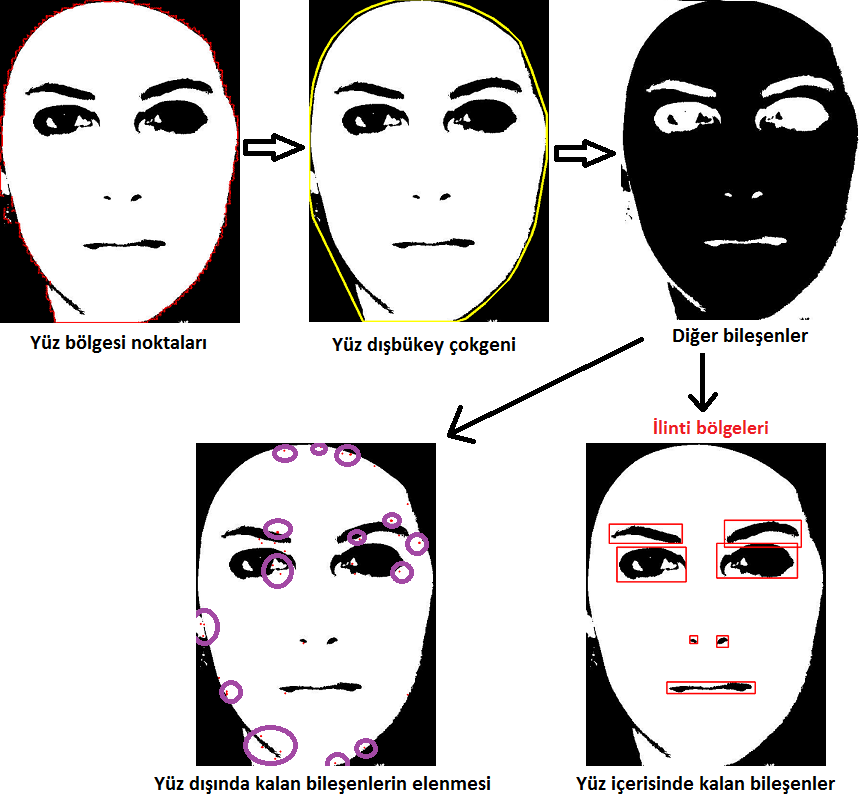 Smart Facial Feature Regions and Facial Feature Sigma 31, 246-261, 2013 Bu işlemlerin ardından bağımsız bağlı bileşen (blob) analizi gerçekleştirilmiştir.