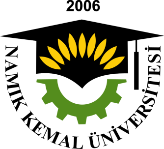 Namik Kemal University Institute of Social Science No: 06 /