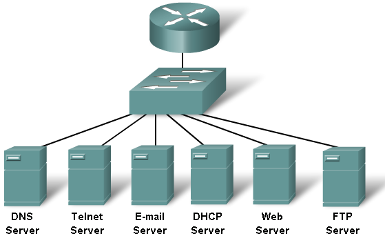 TCP / IP IP Adresi DHCP HTTP DNS