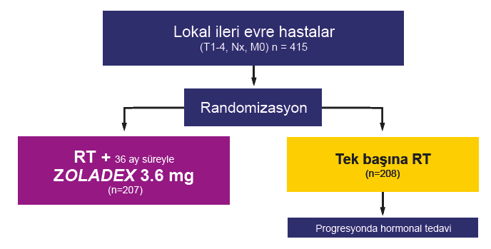 EORTC 22863 RT + Goserelin 3.