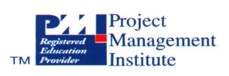BUSINESS MANAGEMENT CONSULTANTS Improving performance through project