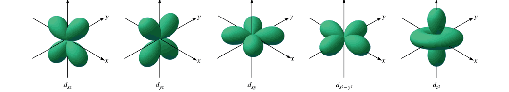 2 nd Quantum Number d orbitals: 5: 3d xz, 3d yz, 3d xy, 3d x2-y2, d z2 mostly cloverleaf l value of 2 1 st occur at