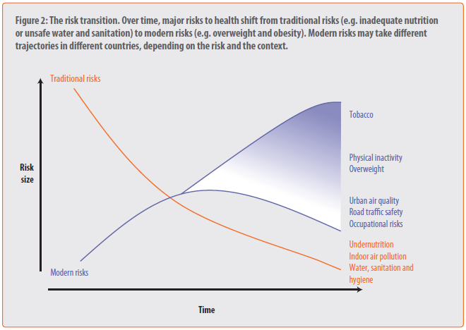 Global health risks: mortality and burden of