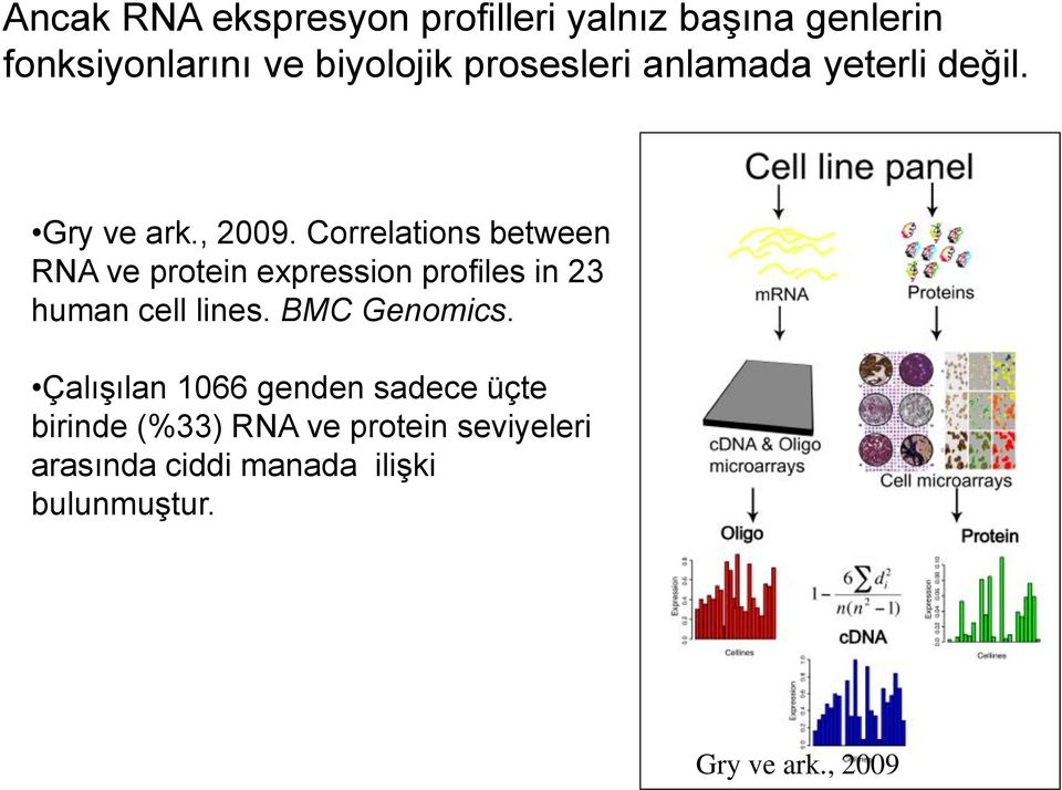 Correlations between RNA ve protein expression profiles in 23 human cell lines.