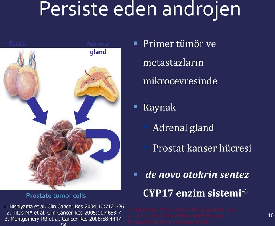 Titus MA et al. Clin Cancer Res 2005;11:4653-7 3. Montgomery RB et al. Cancer Res 2008;68:4447- CYP17 enzim sistemi -6 4.