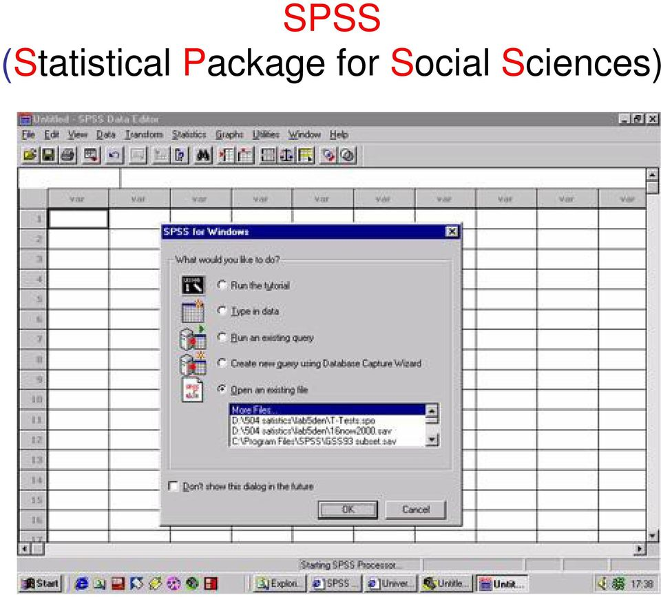 statistical package for social sciences pdf