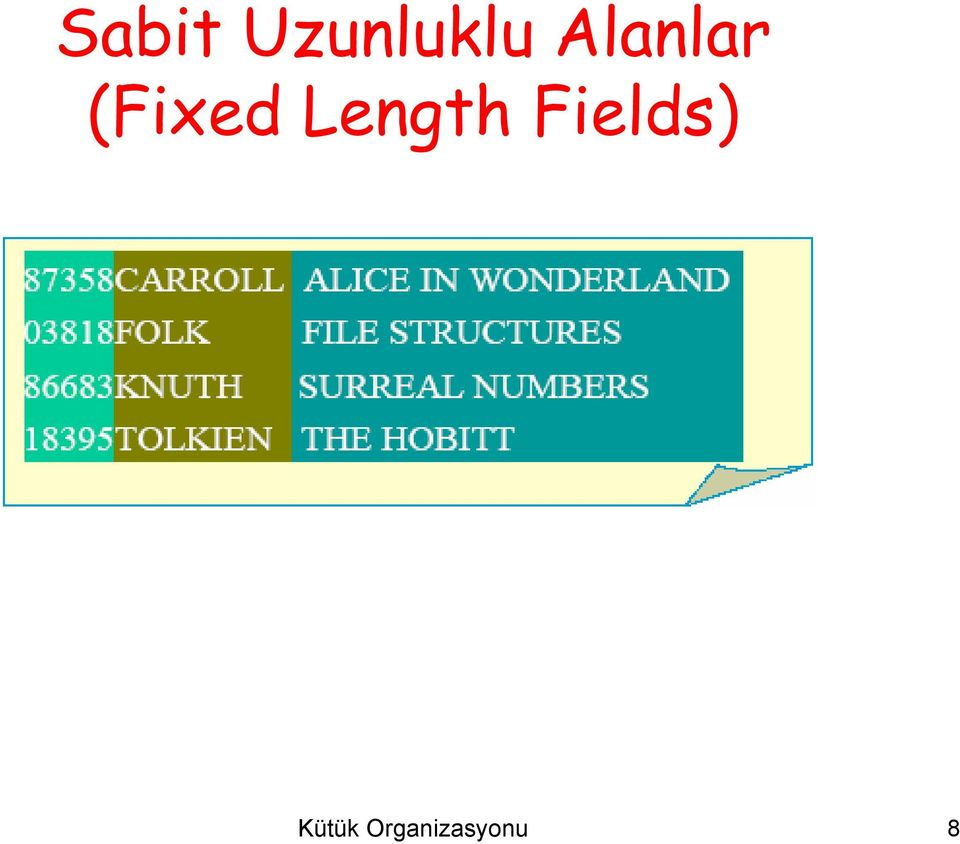 Length Fields)