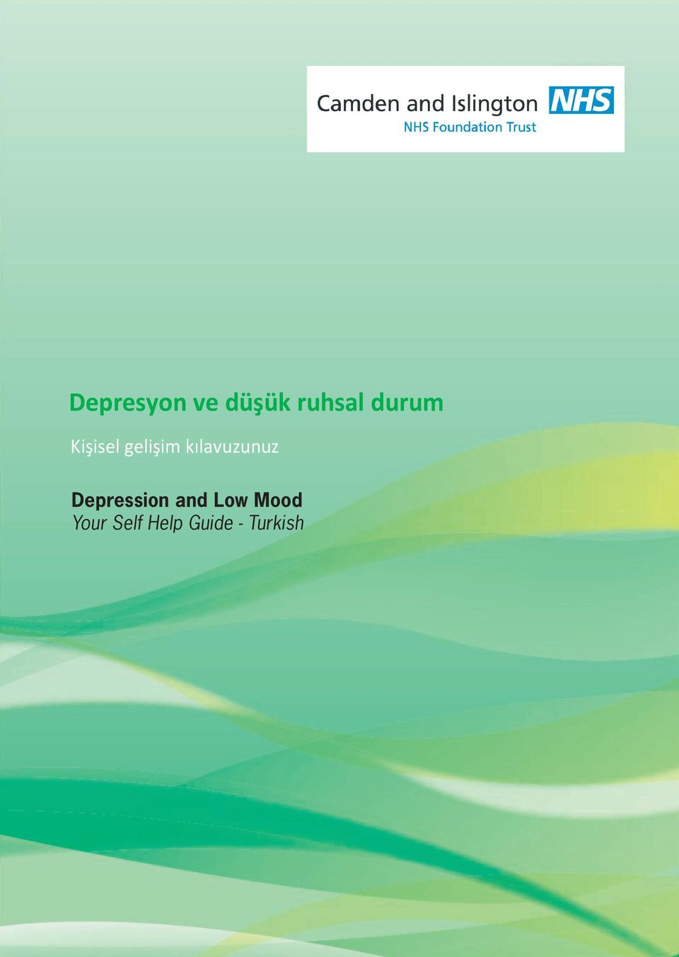 kılavuzunuz Depression and