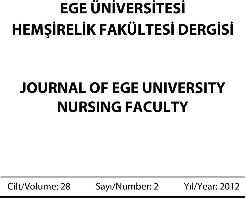 UNIVERSITY NURSING FACULTY