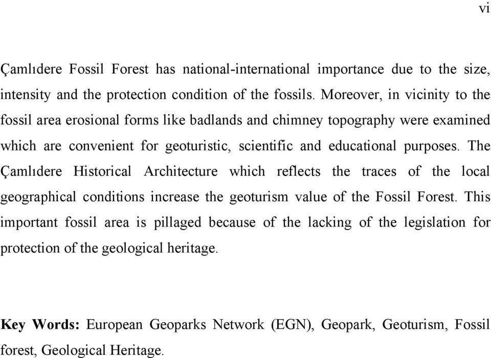purposes. The Çamlıdere Historical Architecture which reflects the traces of the local geographical conditions increase the geoturism value of the Fossil Forest.