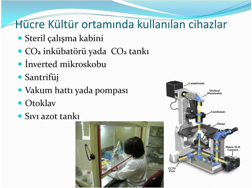 CO2 tankı İnverted mikroskobu Santrifüj
