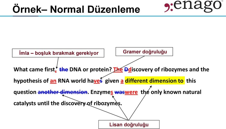 The Ddiscovery of ribozymes and the hypothesis of an RNA world haves given a