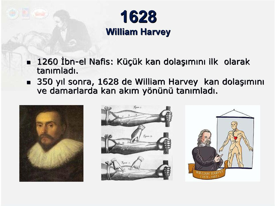 350 yıl y l sonra, 1628 de William Harvey kan