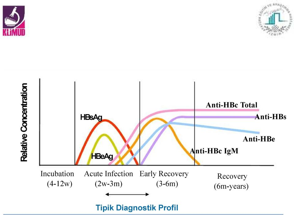 (4-12w) Acute Infection (2w-3m) Early Recovery
