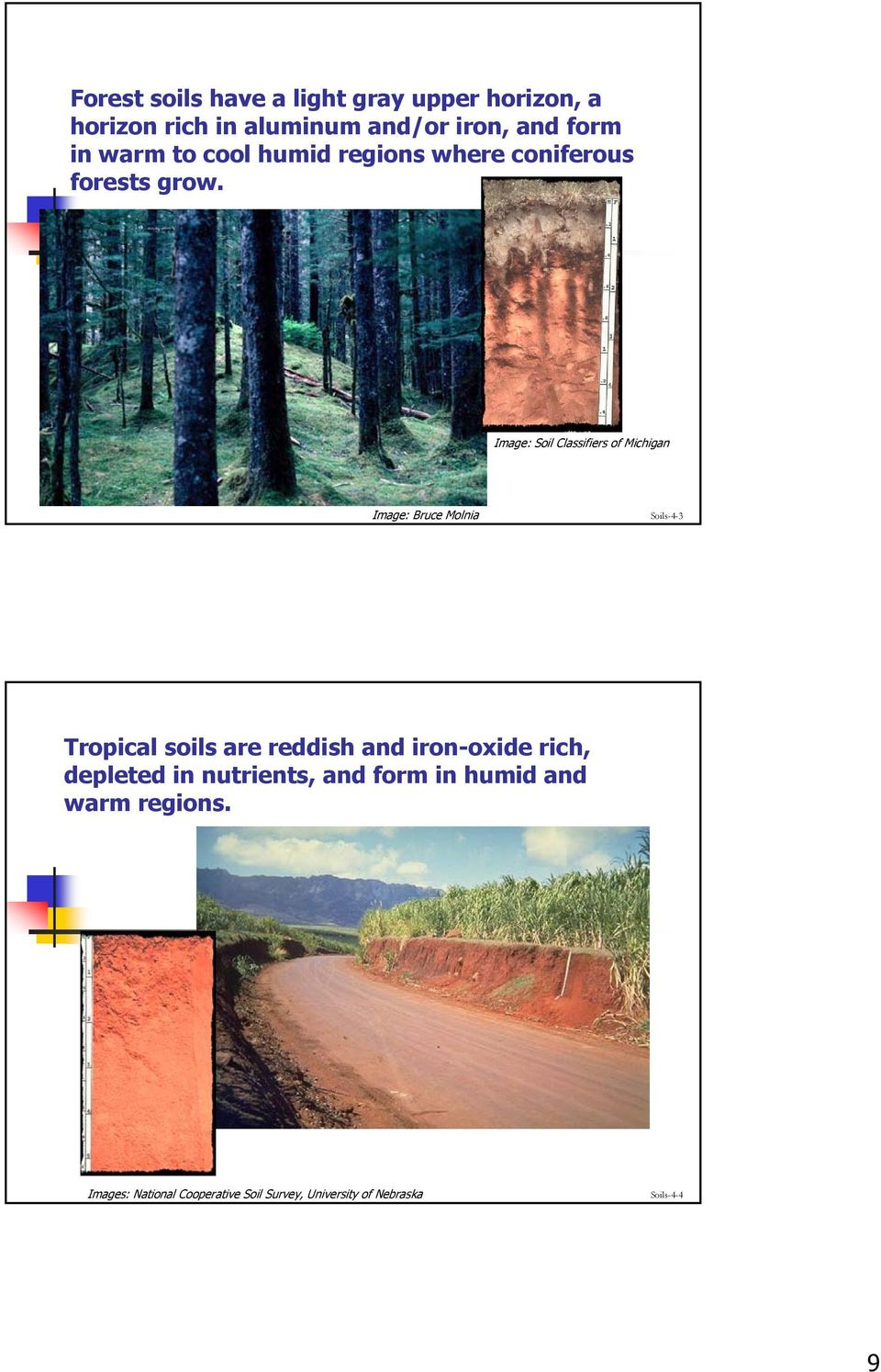 Image: Soil Classifiers of Michigan Image: Bruce Molnia Soils-4-3 Tropical soils are reddish and