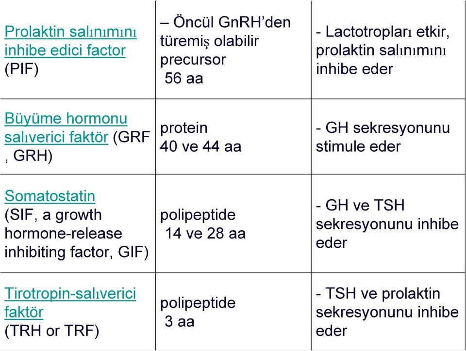 stimule eder Somatostatin (SIF, a growth hormone-release inhibiting factor, GIF) polipeptide 14 ve 28 aa - GH ve TSH