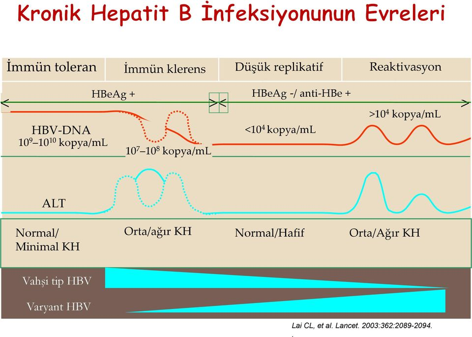 kopya/ml >10 4 kopya/ml ALT Normal/ Minimal KH Orta/ağır KH Normal/Hafif