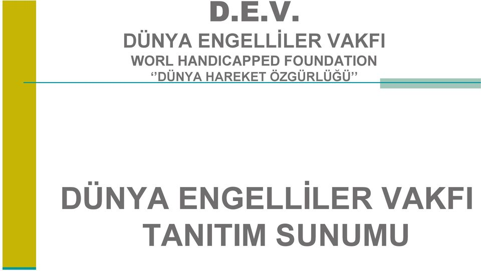 HANDICAPPED FOUNDATION DÜNYA