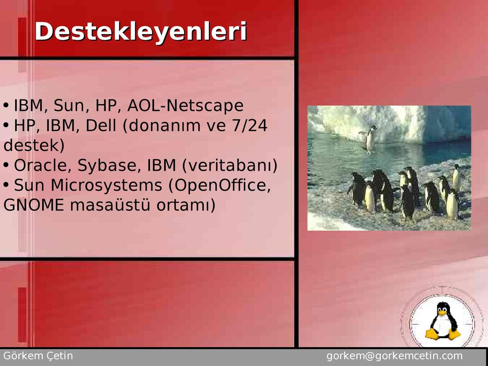 7/24 destek) Oracle, Sybase, IBM