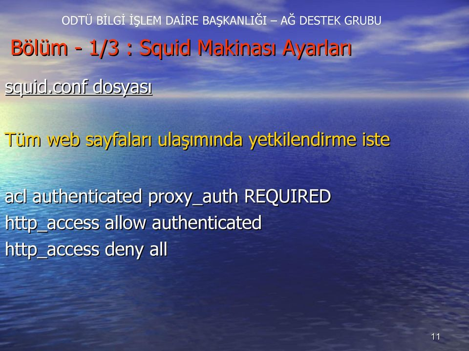 yetkilendirme iste acl authenticated proxy_auth
