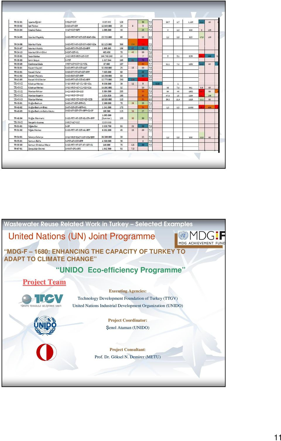 Executing Agencies: Technology Development Foundation of Turkey (TTGV) United Nations Industrial Development
