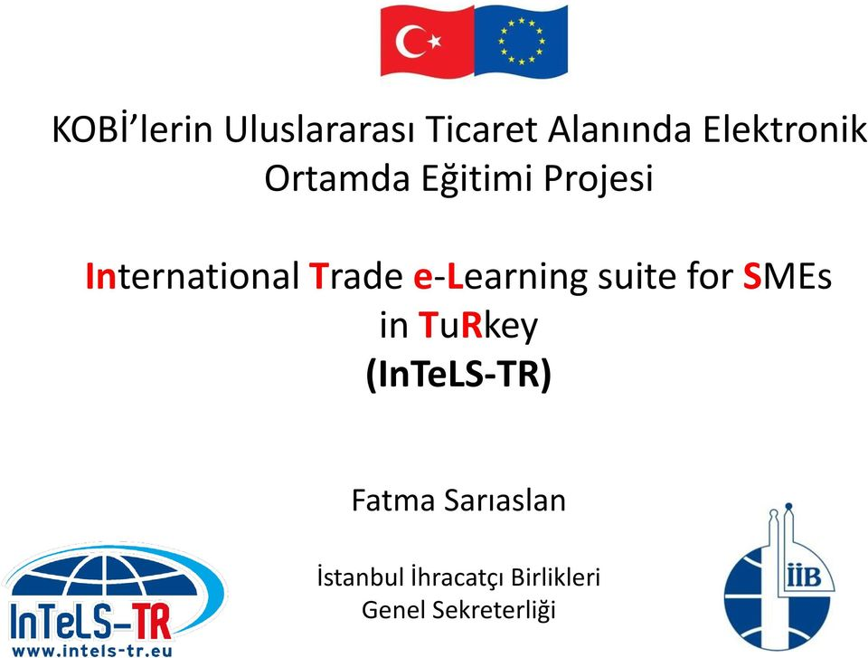 e-learning suite for SMEs in TuRkey (InTeLS-TR)
