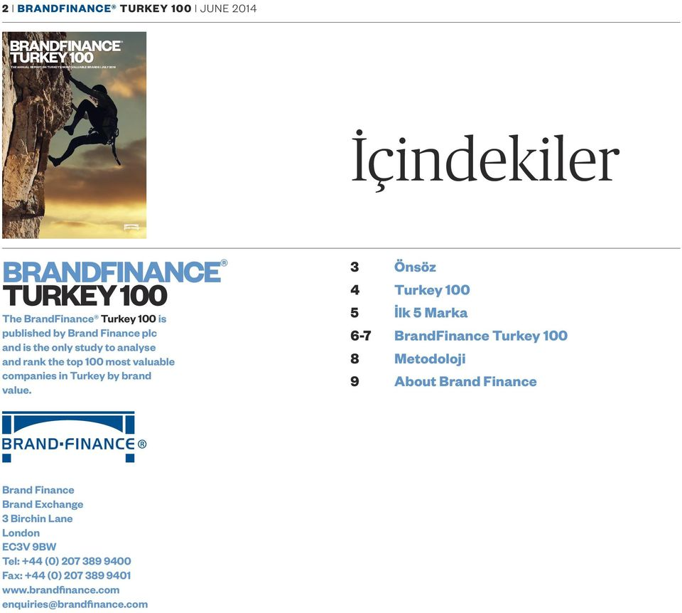 valuable companies in Turkey by brand value.