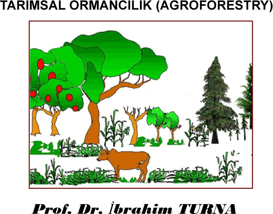 (AGROFORESTRY)