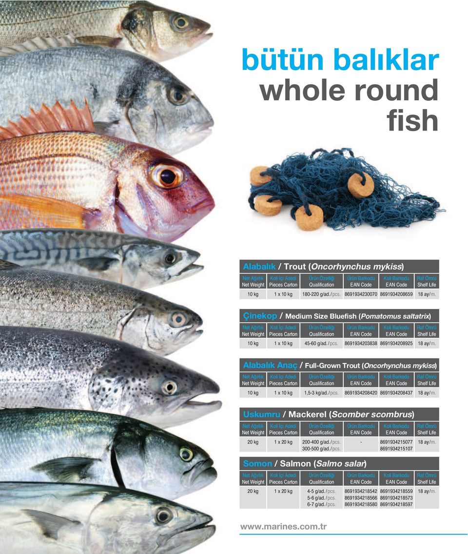 8691934203838 8691934208925 Alabalık Anaç / Full-Grown Trout (Oncorhynchus mykiss) 10 kg 1,5-3 kg/ad./ pcs.