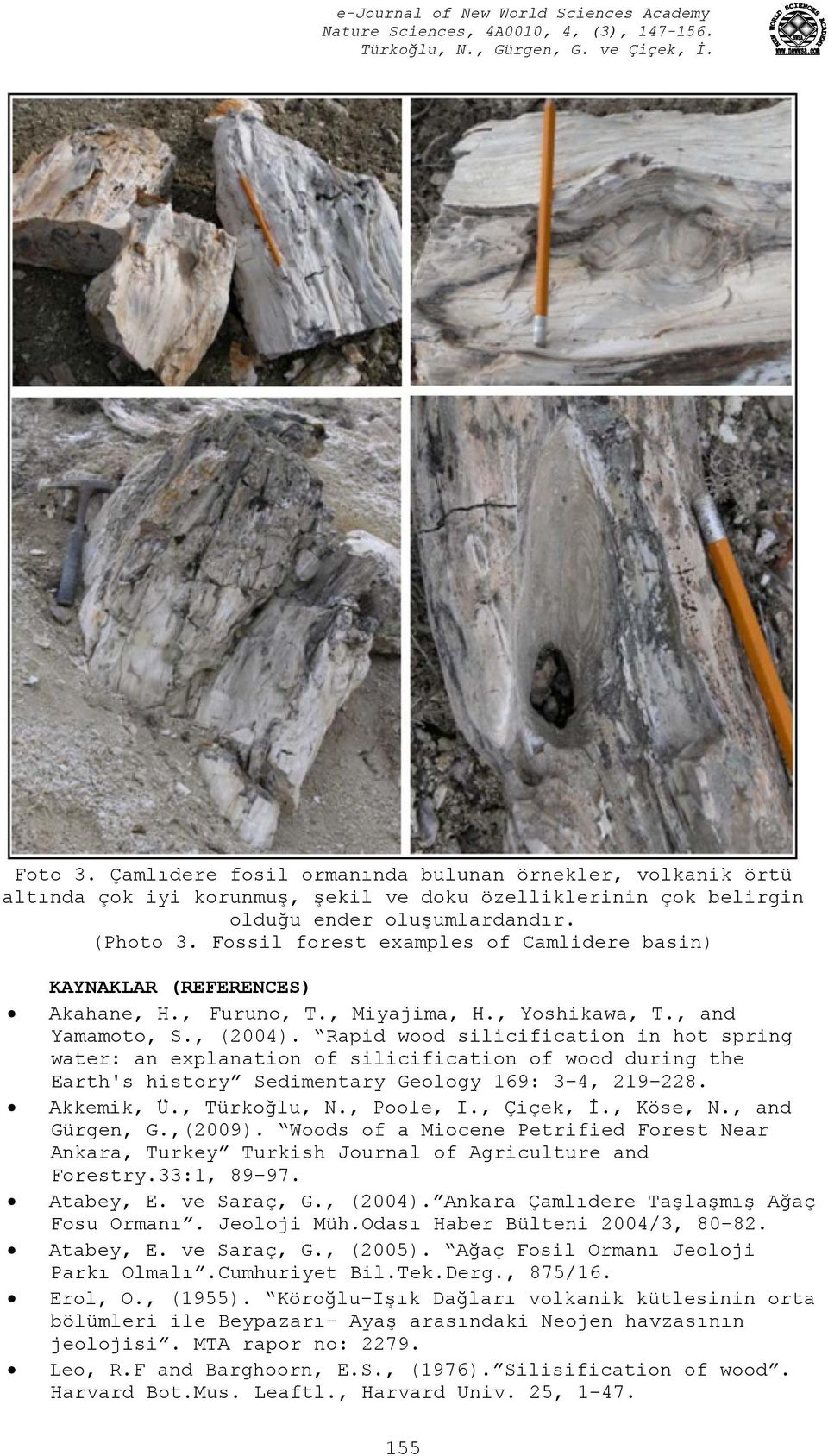Rapid wood silicification in hot spring water: an explanation of silicification of wood during the Earth's history Sedimentary Geology 169: 3 4, 219 228. Akkemik, Ü., Türkoğlu, N., Poole, I.