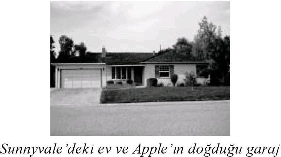 Apple ın