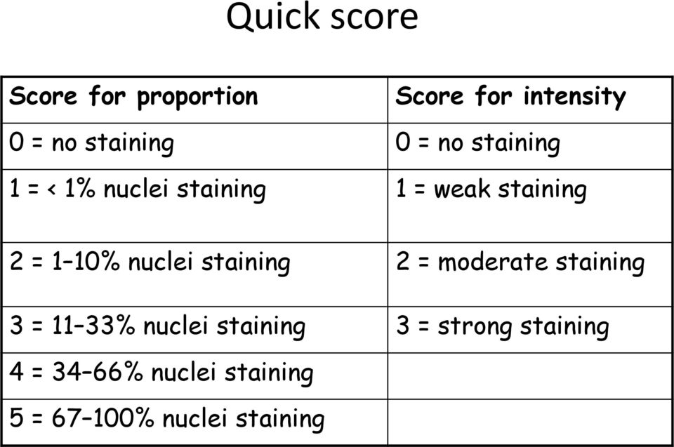 nuclei staining 2 = moderate staining 3 = 11 33% nuclei staining 3 =