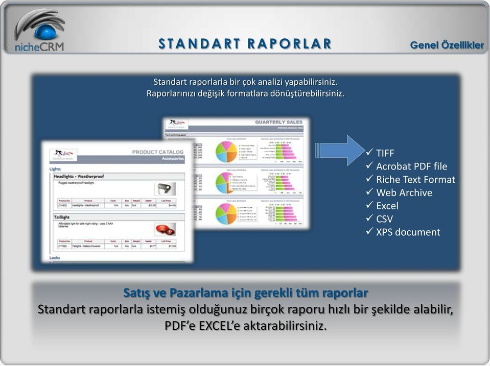 TIFF Acrobat PDF file Riche Text Format Web Archive Excel CSV XPS document Satış ve