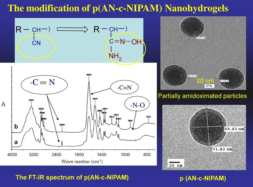 N -C=N -N- 20 nm Partially amidoximated