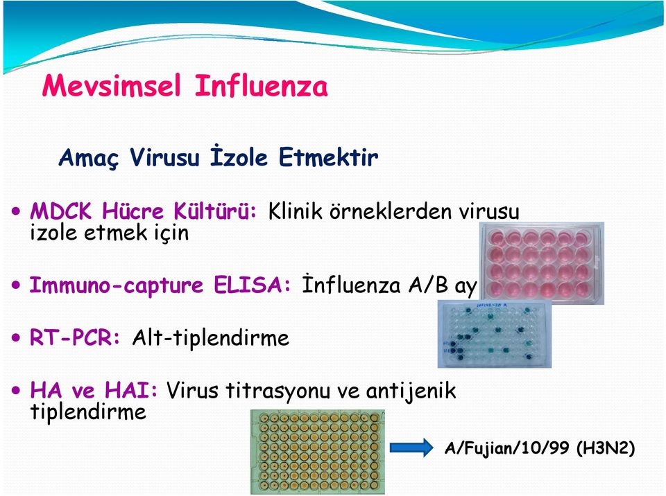 Immuno-capture ELISA: İnfluenza A/B ayrımı RT-PCR: