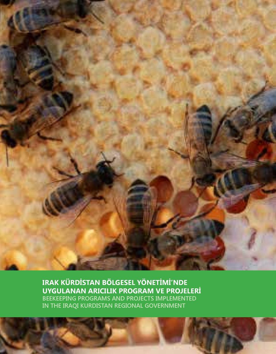 BEEKEEPING PROGRAMS AND PROJECTS