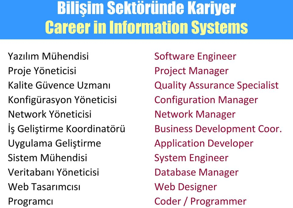 Yöneticisi Web Tasarımcısı Programcı Software Engineer Project Manager Quality Assurance Specialist Configuration