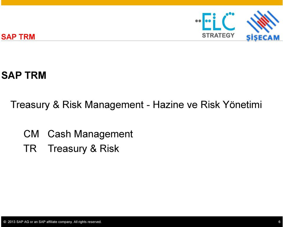 Management TR Treasury & Risk 2013 SAP AG