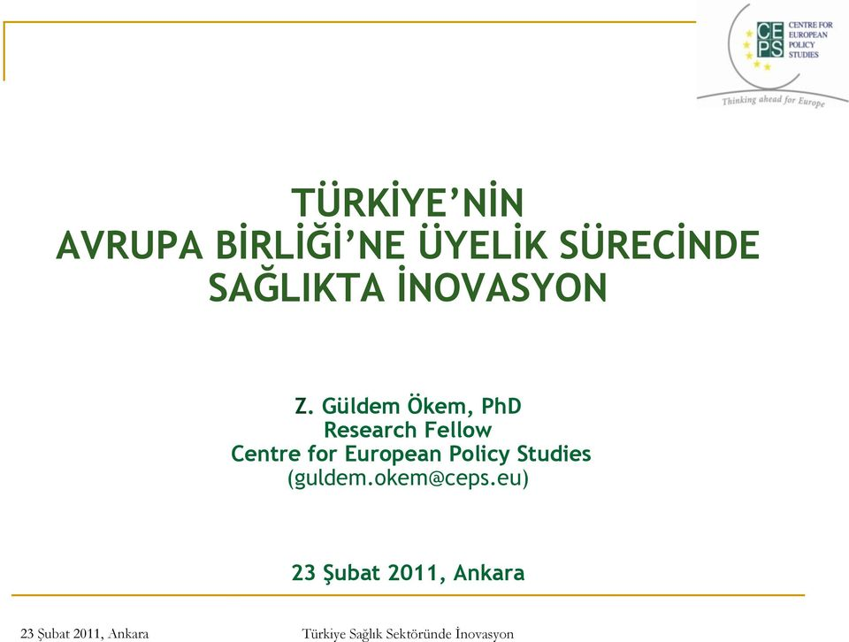 Güldem Ökem, PhD Research Fellow Centre for