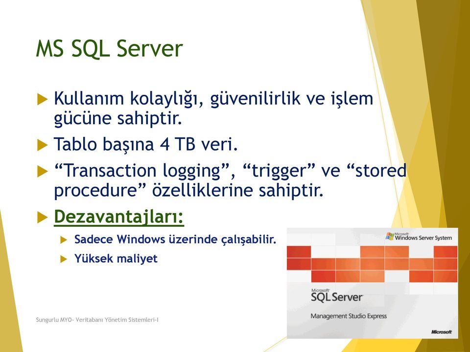 Transaction logging, trigger ve stored procedure