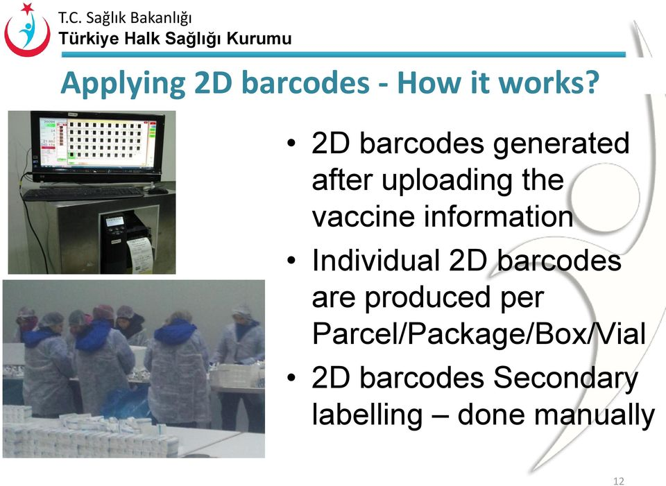 information Individual 2D barcodes are produced per