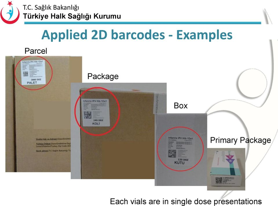 Primary Package Each vials