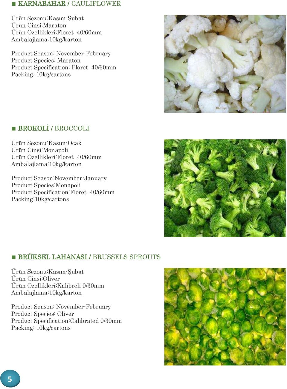 Product Season:November-January Product Species:Monapoli Product Specification:Floret 40/60mm BRÜKSEL LAHANASI / BRUSSELS SPROUTS Ürün