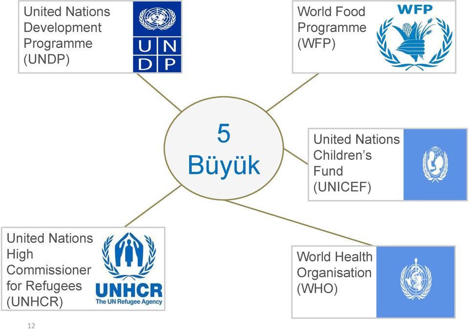 Children s Fund (UNICEF) United Nations High