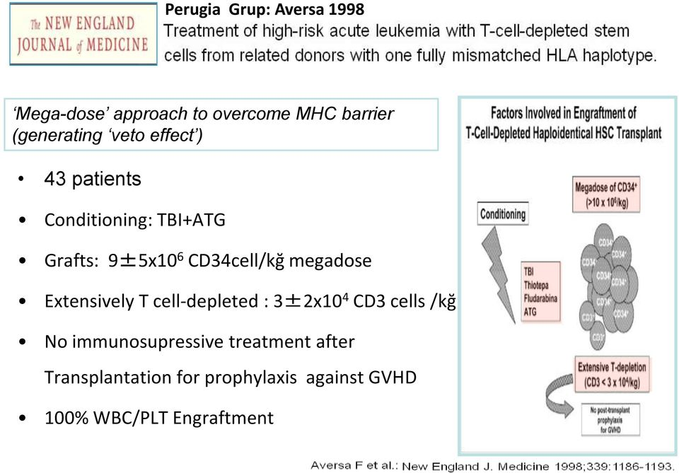 megadose Extensively T cell-depleted : 3±2x10 4 CD3 cells /kğ No immunosupressive