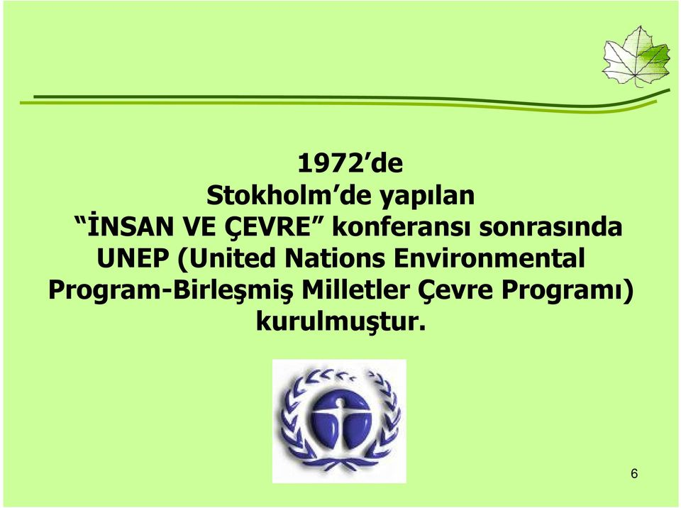 (United Nations Environmental