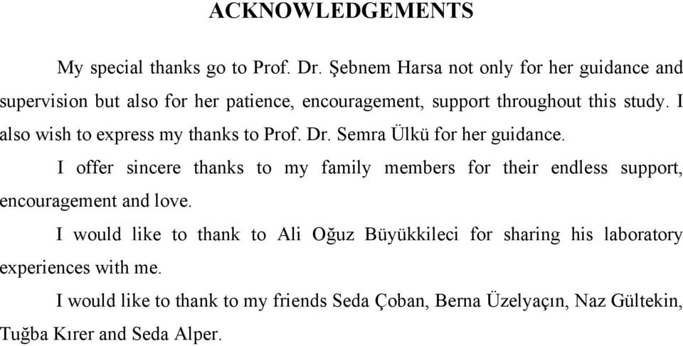I also wish to express my thanks to Prof. Dr. Semra Ülkü for her guidance.
