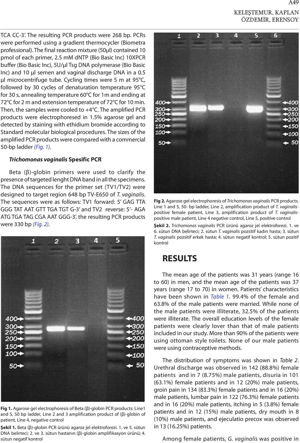 5 mm dntp (Bio Basic Inc) 10XPCR buffer (Bio Basic Inc), 5U/µl Tsg DNA polymerase (Bio Basic Inc) and 10 µl semen and vaginal discharge DNA in a 0.5 µl microcentrifuge tube.