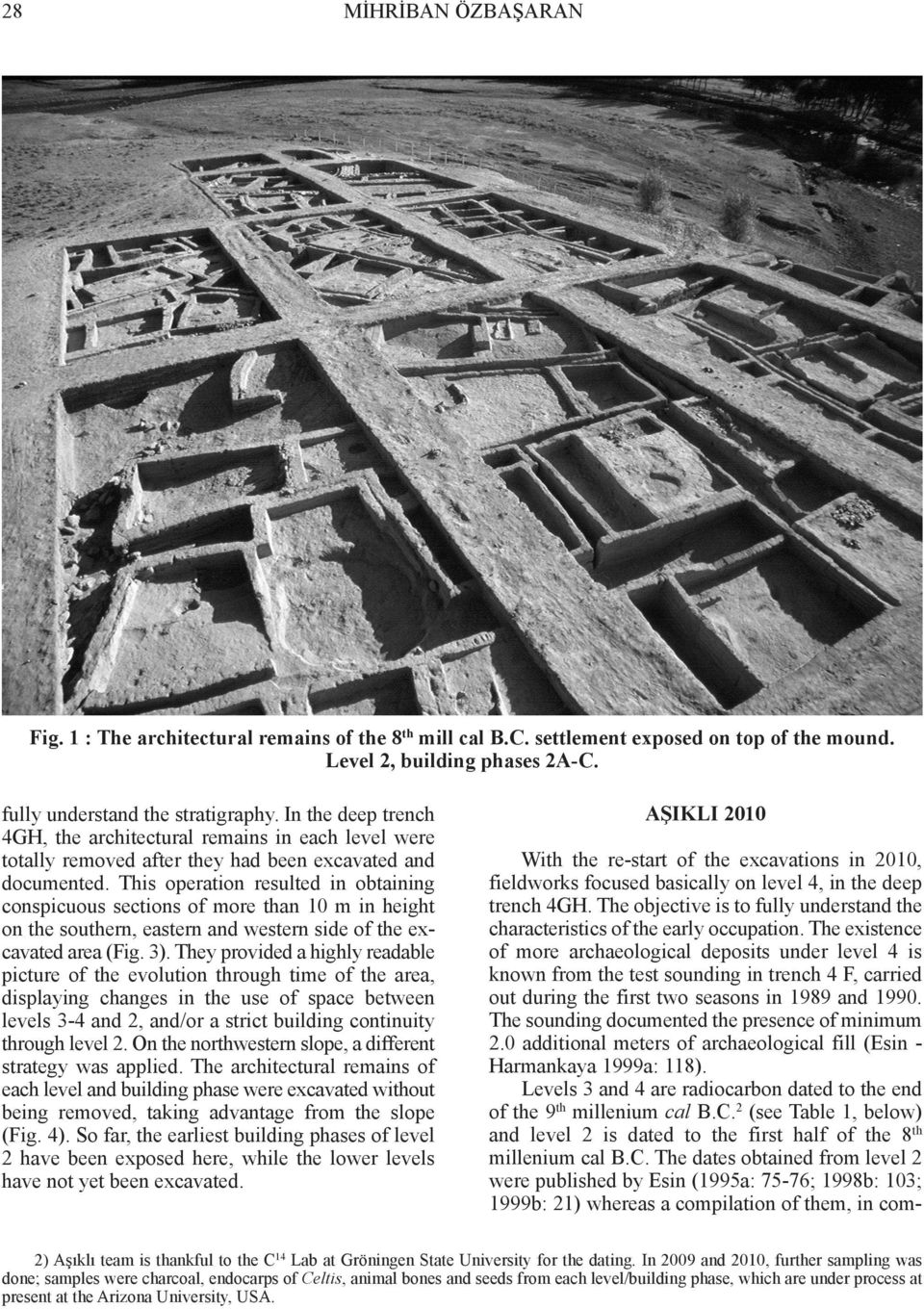 This operation resulted in obtaining conspicuous sections of more than 10 m in height on the southern, eastern and western side of the excavated area (Fig. 3).
