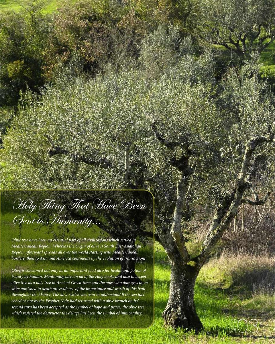 transactions. Olive is consumed not only as an important food also for health and potion of beauty by human.